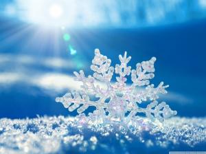 Brian_snowflake
