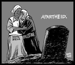 aparthied palestine