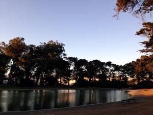 Square Lake [Golden Gate Park]