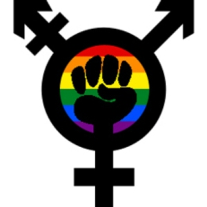 trans-feminism-rainbow_400x4001